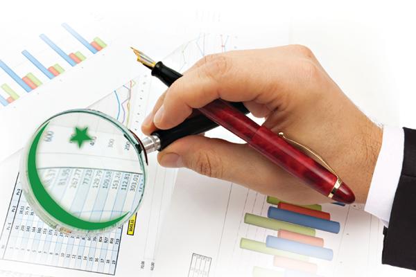 Phân tích cấu trúc tài chính