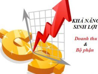 Phân tích khả năng sinh lợi của doanh thu