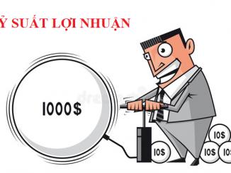 Phân tích các chỉ tiêu đánh giá lợi nhuận đầu tư doanh nghiệp