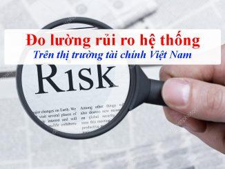 Đo lường rủi ro tài chính trên thị trường tài chính Việt Nam