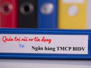 Quản trị rủi ro tín dụng tại ngân hàng TMCP BIDV