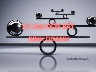 12_ loai_don_bay_kinh_doanh