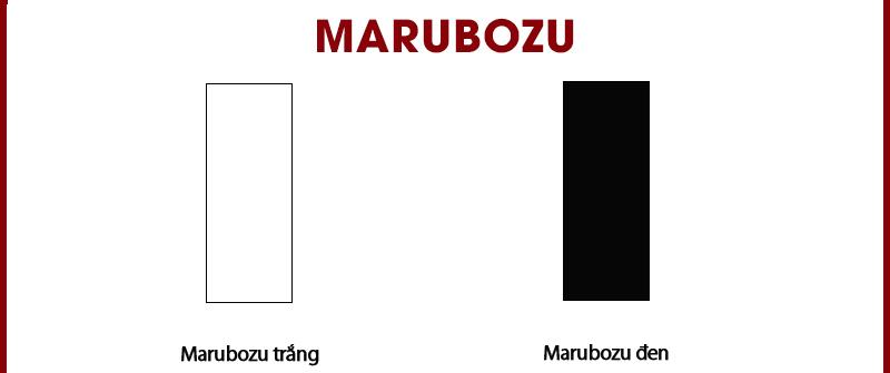 Mô hình nến Marubozu